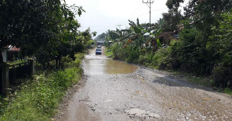 Jalan desa Senali Arga Makmur-Lebong